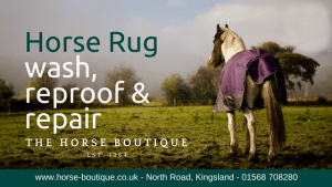 Horse Boutique competition