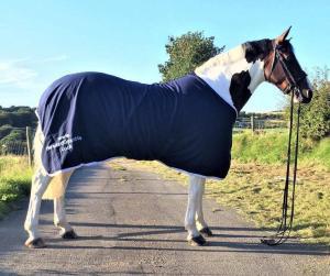 Shires Equestrian rug