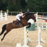 Talented Herefordshire 15 Year Old gets through to HOYS