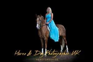 The Horse & Dog Photographer Herefordshire UK
