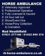 Horse Ambulance