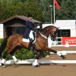 A fitting finale for Hartpury's fabulous Festival of Dressage