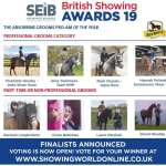 Voting Now Open for Absorbine National Groom Awards