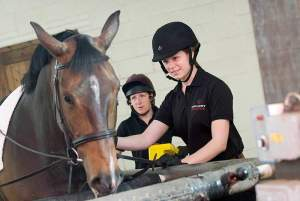 Equine students at Hartpury University
