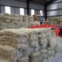 Small Square Hay Bales.