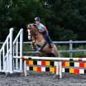 For Loan: 13hh PC/BS pony