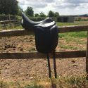 "Amerigo Pinerolo dressage saddle 17"" Wide"