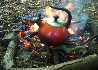 Building and using fires for cooking
