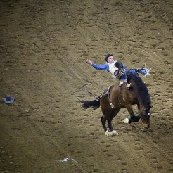 At the San Antonio Rodeo. The San Antonio Stock Show & Rodeo in San Antonio, Texas is one of the largest livestock shows and rodeos in the country. YeeeeeeeHaaaaaw!