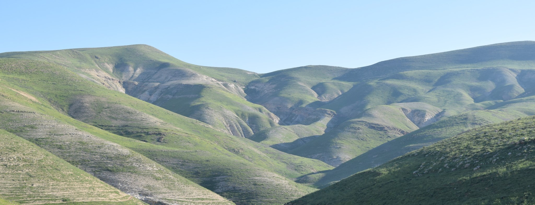 Why did David lift his eyes to the hills? A new perspective