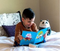 Young boy happy to read