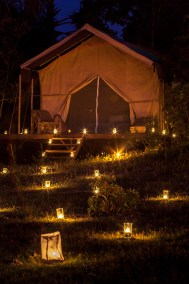 A Night Out in our Jungle Luxury Tent Camp