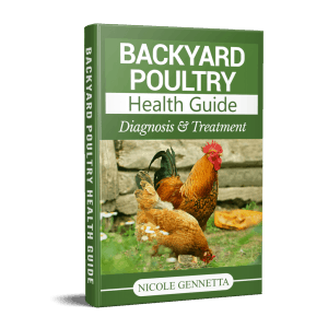 DIY Chicken First Aid Kit 1