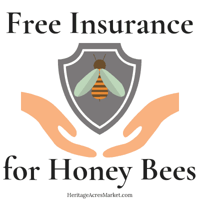 Free Insurance for Honey Bees 1