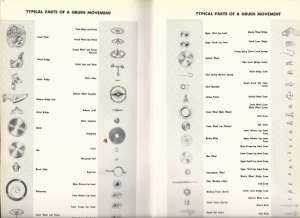 gruen_material_catalog_453_pg34_pg35