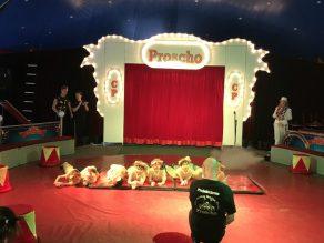 2018-zirkusprojekt-087
