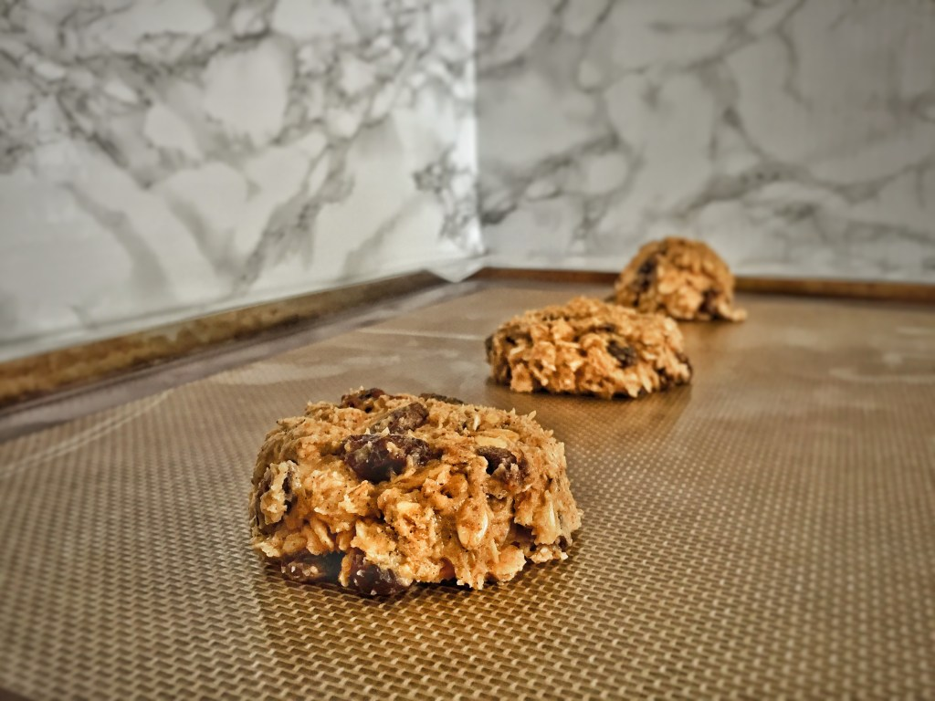 Best Ever Oatmeal Raisin Cookies Dough Flattened