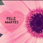 Feliz Martes Bellas Imagenes Y Frases Hermosasimagenes Net