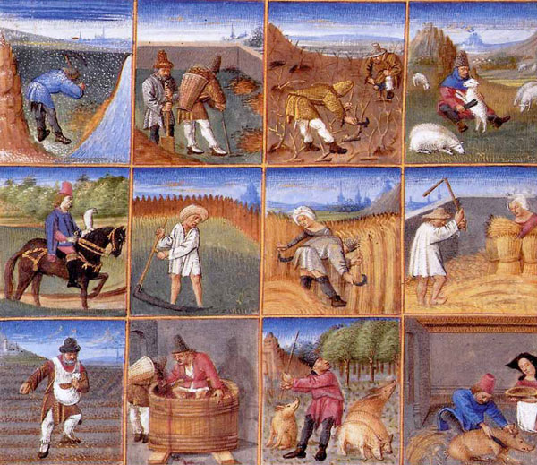 Enluminures du Rustican (ou Livre des profits champêtres et ruraux), de Pietro de Crescenzi, 1305 (musée Condé, Chantilly)