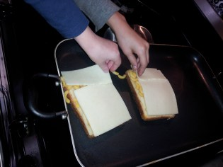 Cover with cheese