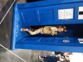 Dr. Hooves in the TARDIS