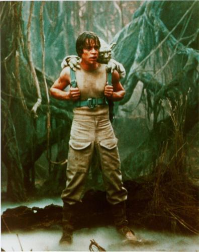 Yoda Trains Luke