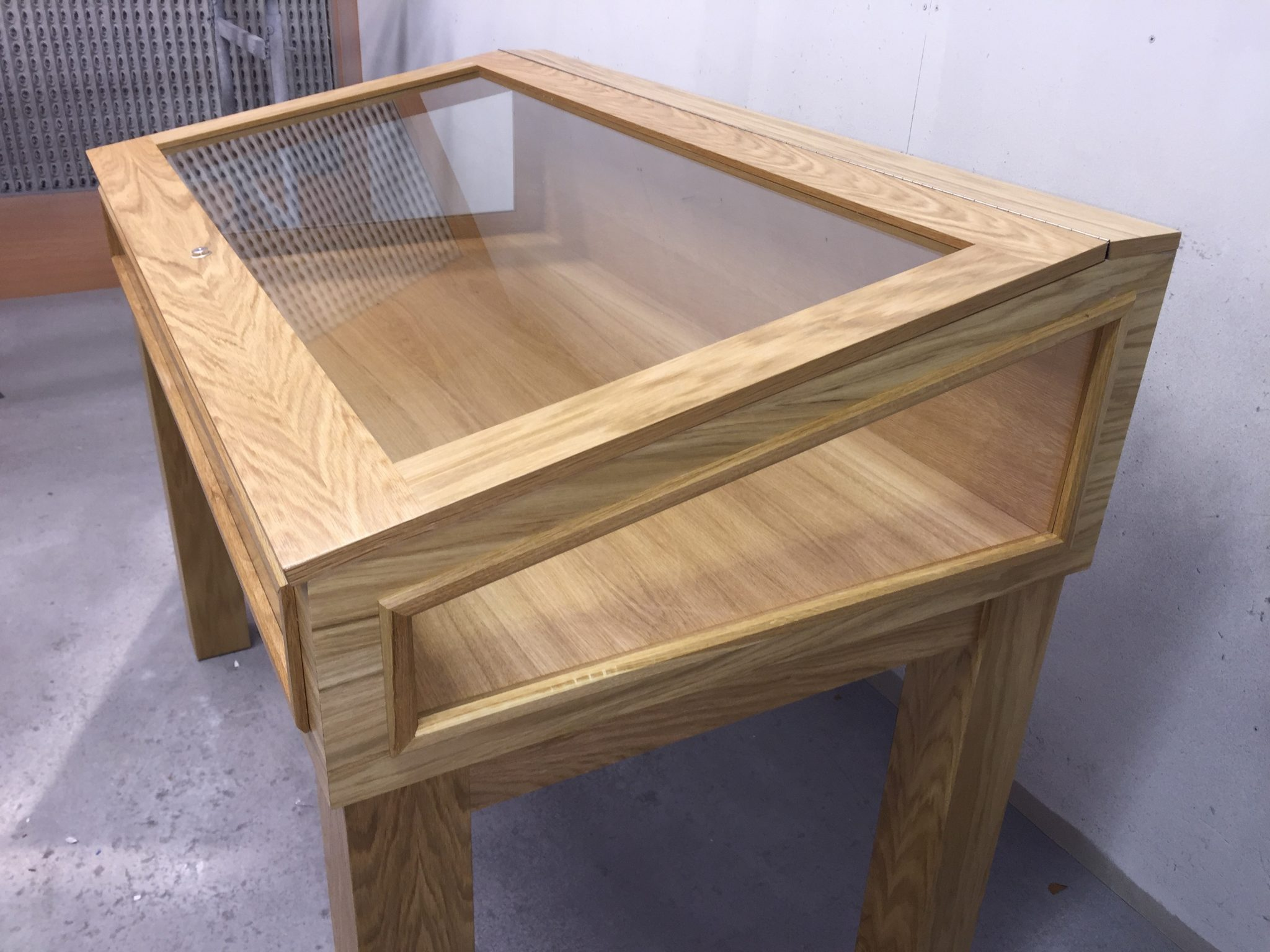 Glass display case cabinet in Oak, ideal for book display