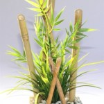 Sydeco bamboo large plants 25CM