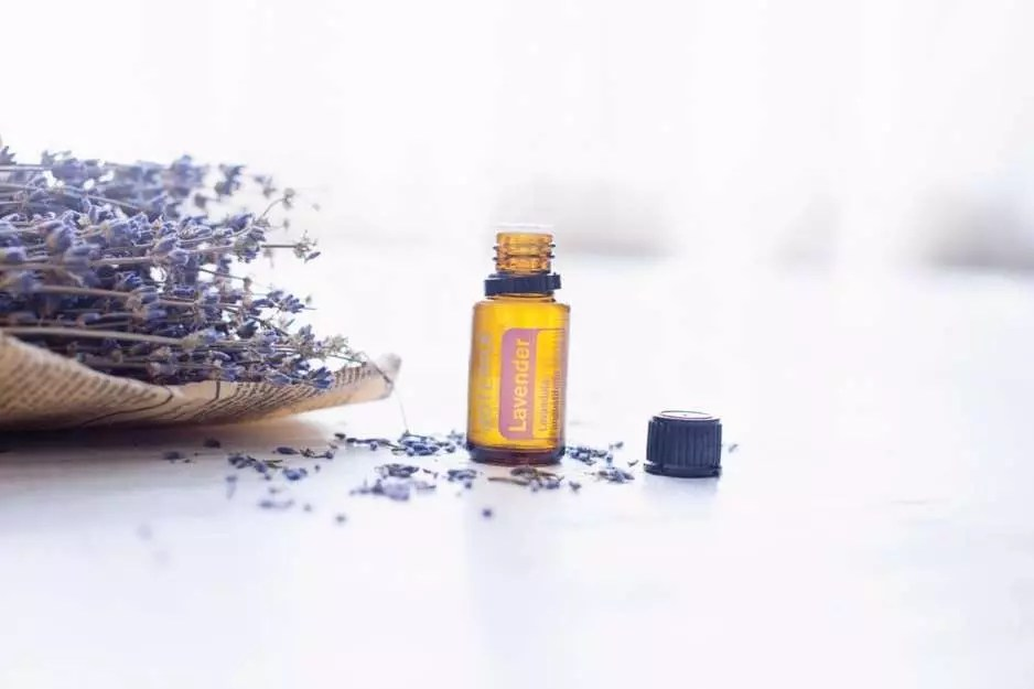 4 Amazing Essential Oils for Skin and Aromatherapy