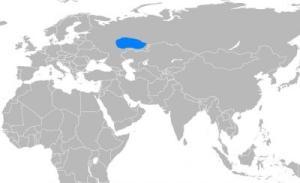 idil tuna türkleri