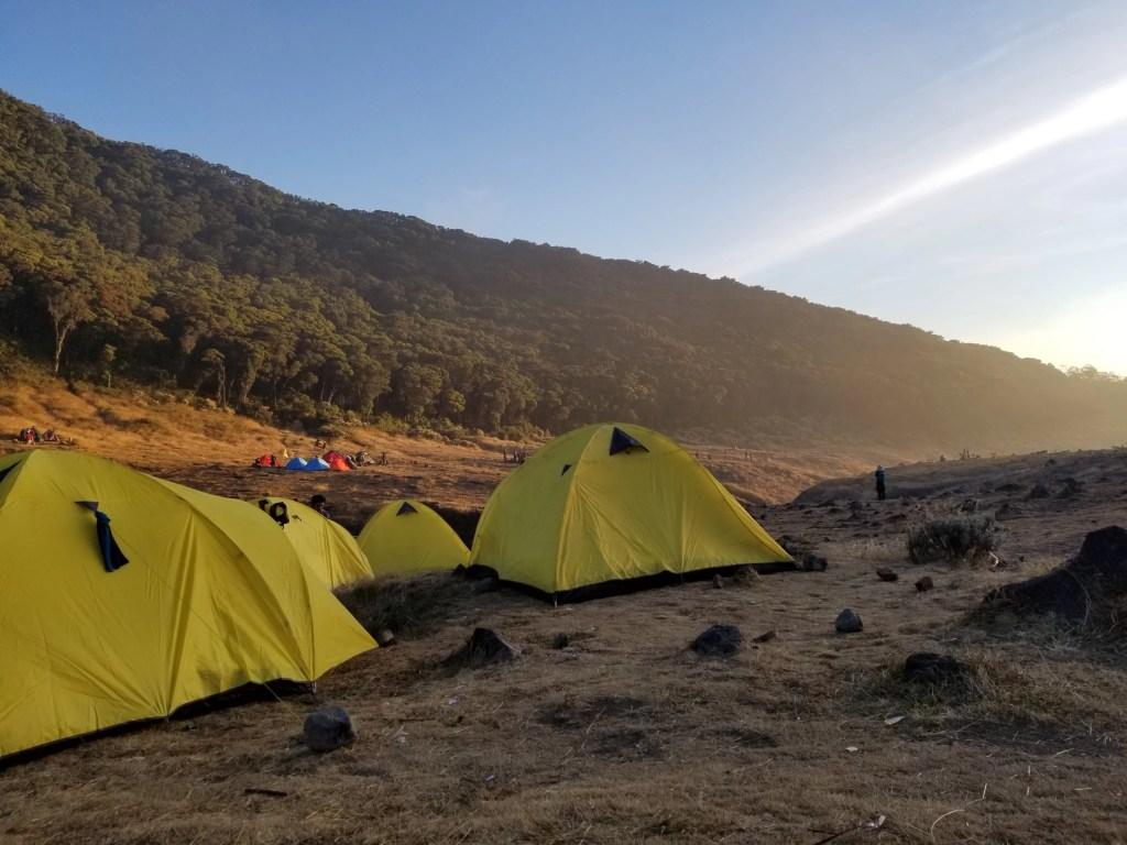 Pendakian Gunung Gede: Putri Lintas Cibodas - Menuju Surya Kencana (2/3) Mendirikan Tenda di Surya Kencana Gunung Gede 1 15