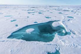Es Kutub Hilang Mencair Es Kutub Mencair 1