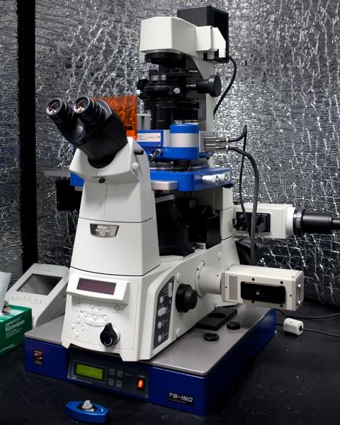 JPK NanoWizard II on TS-150