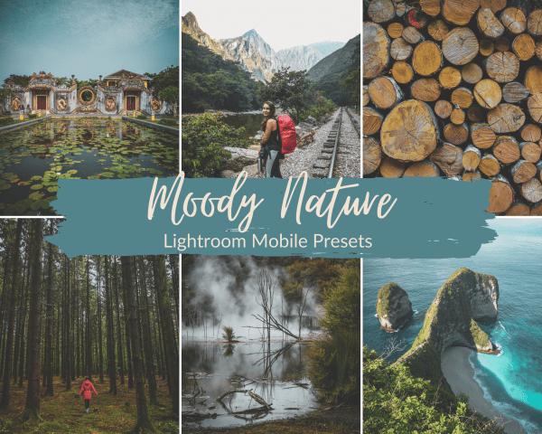 Moody Nature Preset Lightroom Mobile