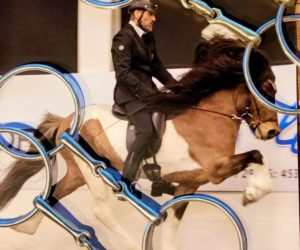 Til hesten_VALS
