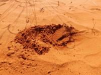 Little Red Desert 11 - Fine dust