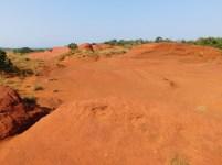 Little Red Desert 4