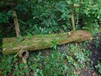 Bendigo Nature Reserve bench overgrown with moss