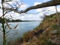 Mzimkhulu River, Port Shepstone