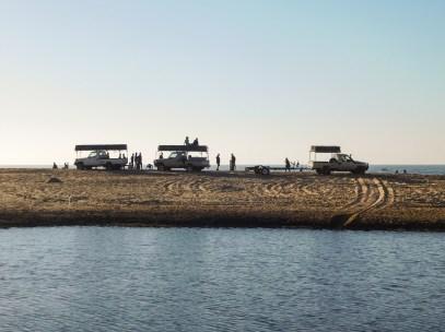Walskippers staan gereed om die sardyne op te laai