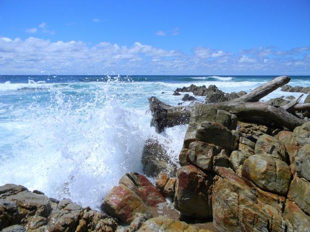 Sea Park Beach