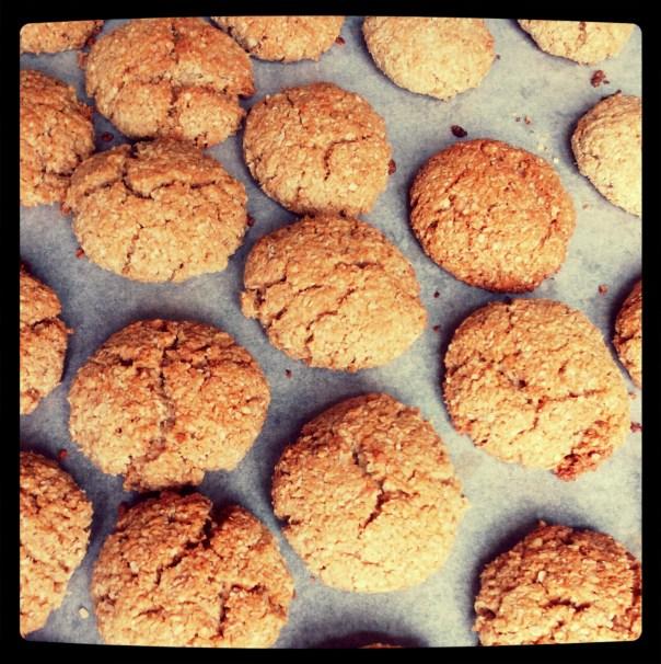 Foto: kokos havermout koekjes