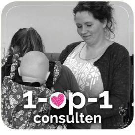 1-op-1 Consulten
