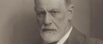 l'homosexualité de freud sigmund freud 1856 1939 psychanalyse