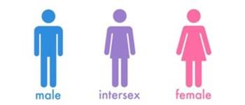 loi bioethique intersexe