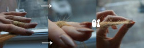 haar puntjes tekst collage