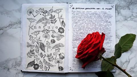 Journal Dagboek ideeëen 30 Het feestje van Iris