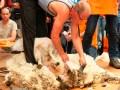Kloosterman weer beste schaapscheerder van Nederland