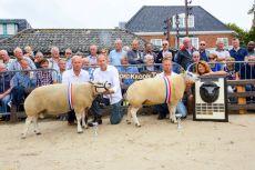 Texelaar keuring TSNH Den Burg 2018 1jarige rammen