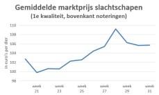 Grafiek met marktprijzen van slachtschapen laat prijsstijging zien in juni en juli en prijsdaling in augustus